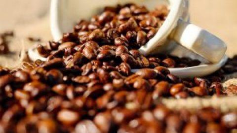 コーヒー(挽きたて)が飲めるコワーキング